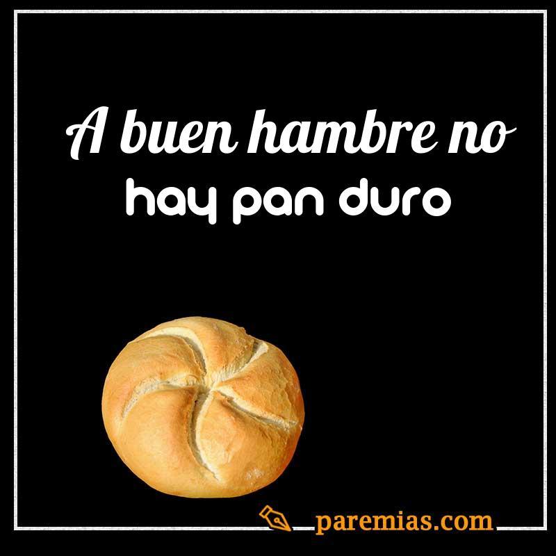 A buen hambre no hay pan duro