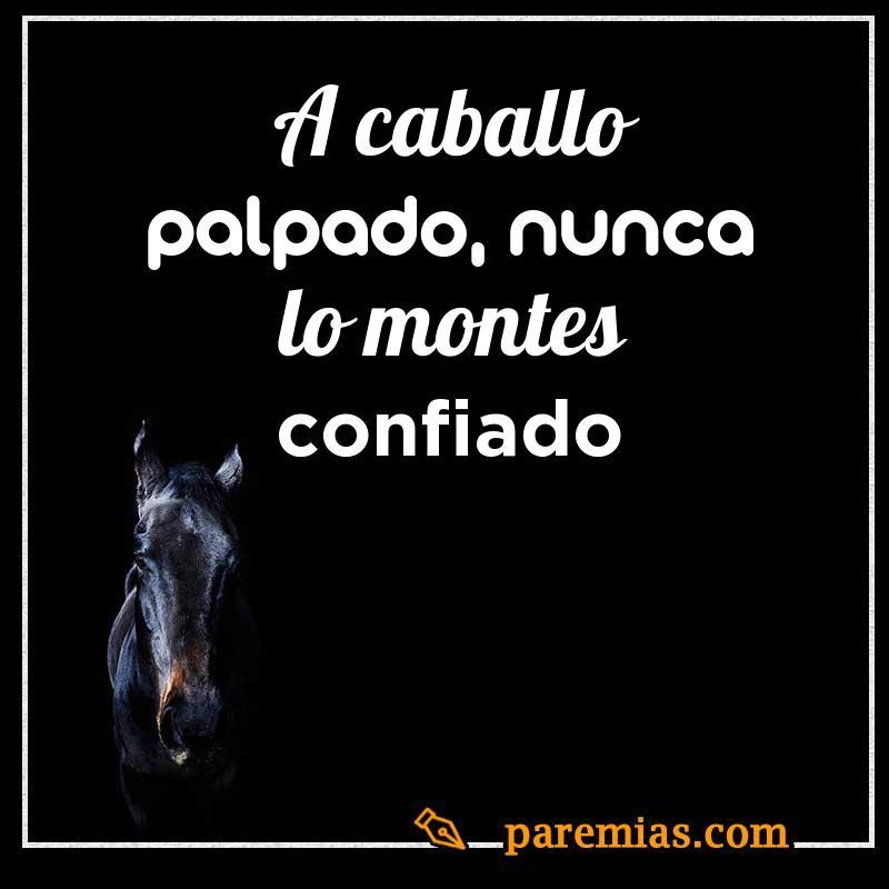 A caballo palpado, nunca lo montes confiado