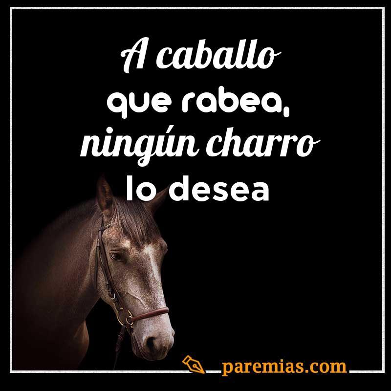 A caballo que rabea, ningún charro lo desea