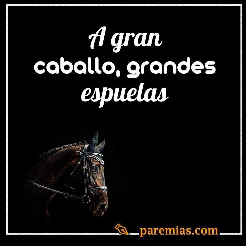A gran caballo, grandes espuelas