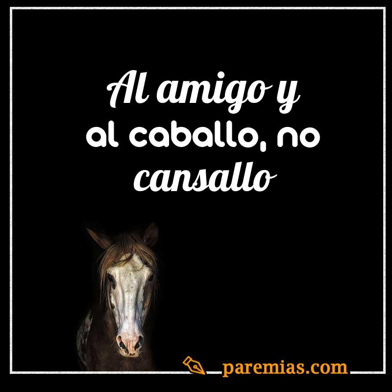 Al amigo y al caballo, no cansallo