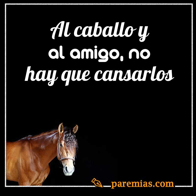 Al caballo y al amigo, no hay que cansarlos