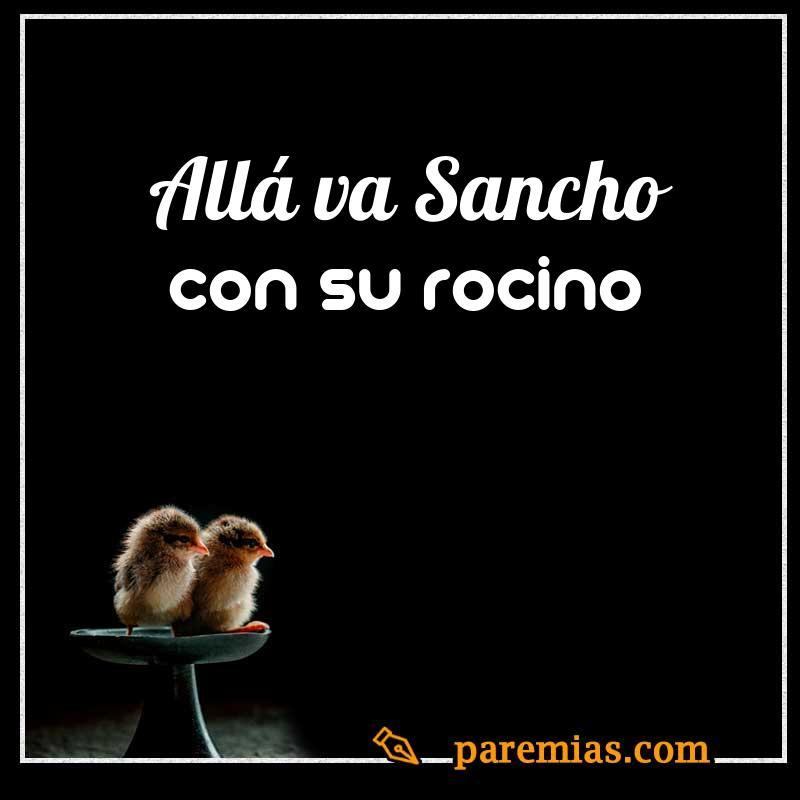 Allá va Sancho con su rocino