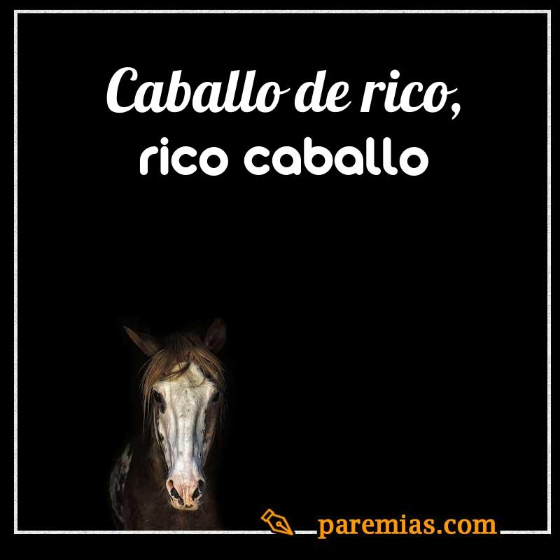 Caballo de rico, rico caballo