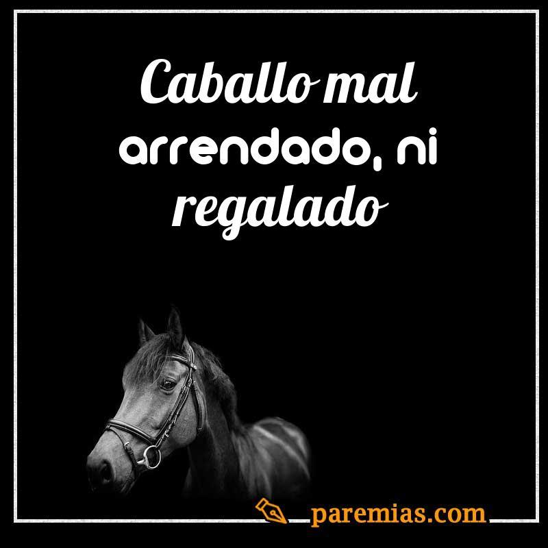 caballo mal arrendado, ni regalado