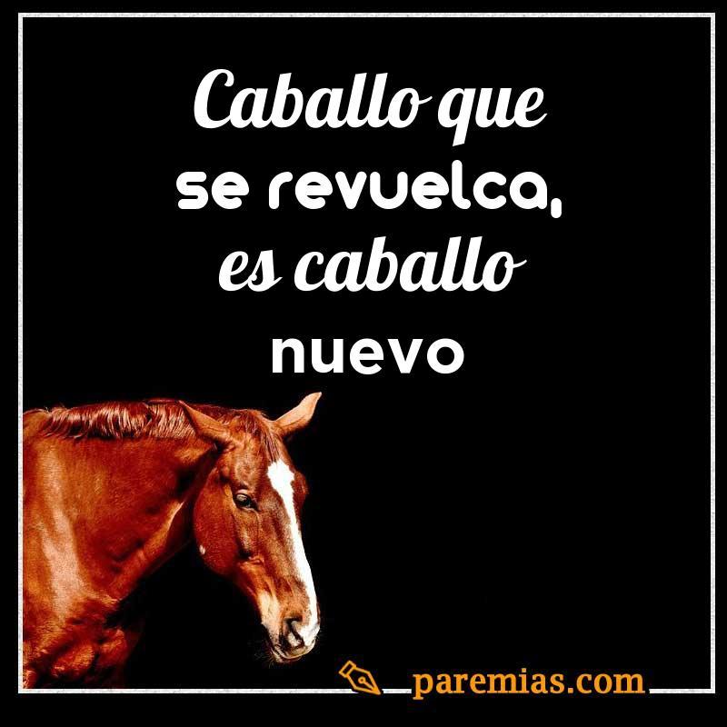 Caballo que se revuelca, es caballo nuevo