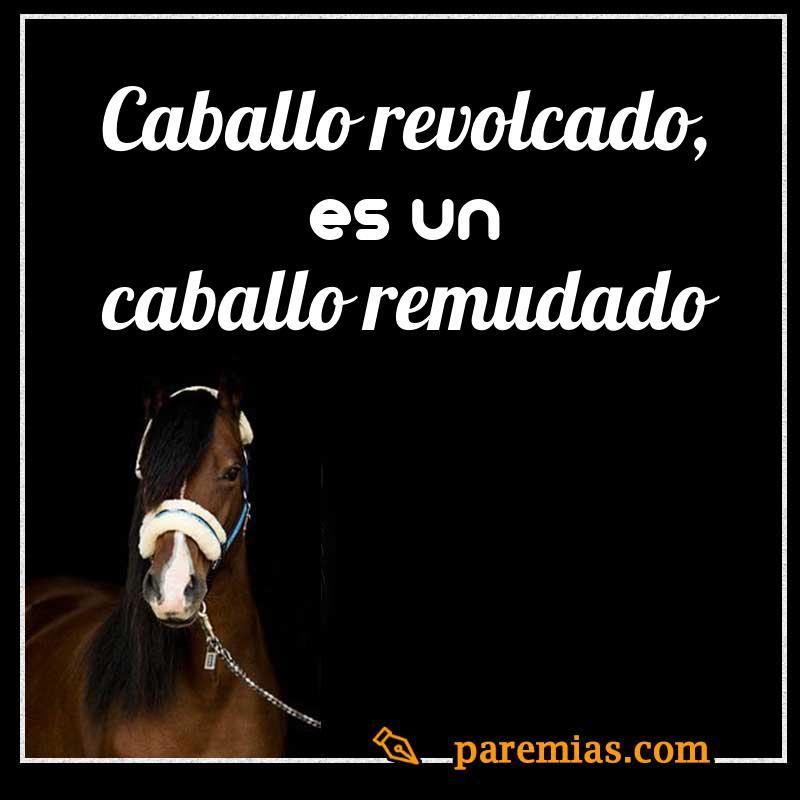 Caballo revolcado, es un caballo remudado