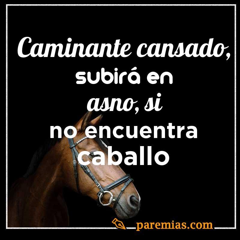 Caminante cansado, subirá en asno, si no encuentra caballo