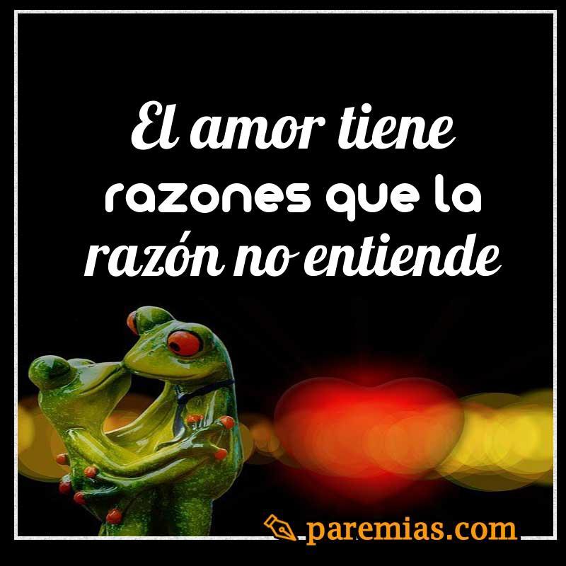 El amor tiene razones que la razón no entiende
