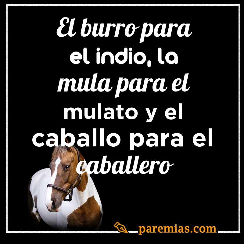 El burro para el indio, la mula para el mulato y el caballo para el caballero