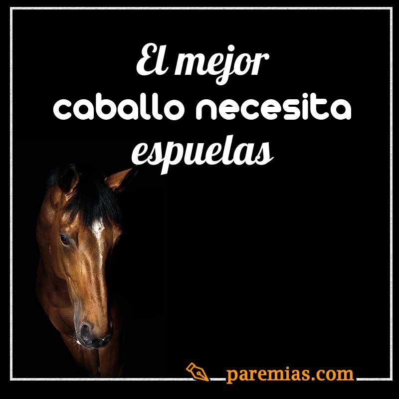 El mejor caballo necesita espuelas