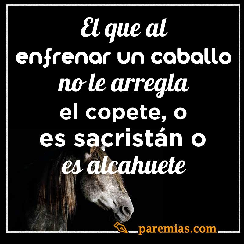 El que al enfrenar un caballo no le arregla el copete, o es sacristán o es alcahuete