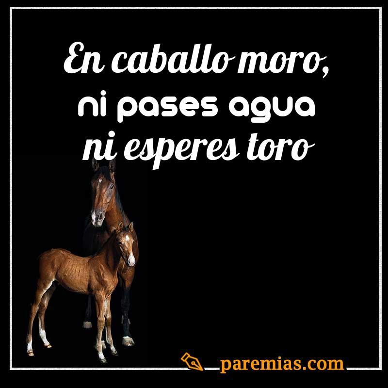 En caballo moro, ni pases agua ni esperes toro