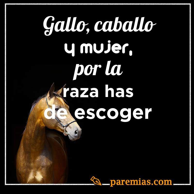 Gallo, caballo y mujer, por la raza has de escoger