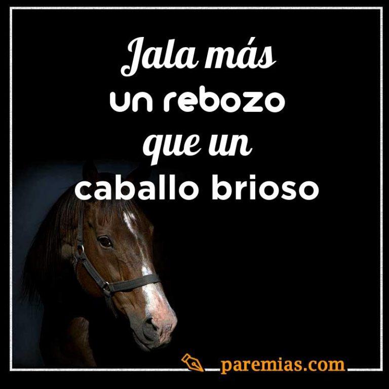 Jala más un rebozo que un caballo brioso