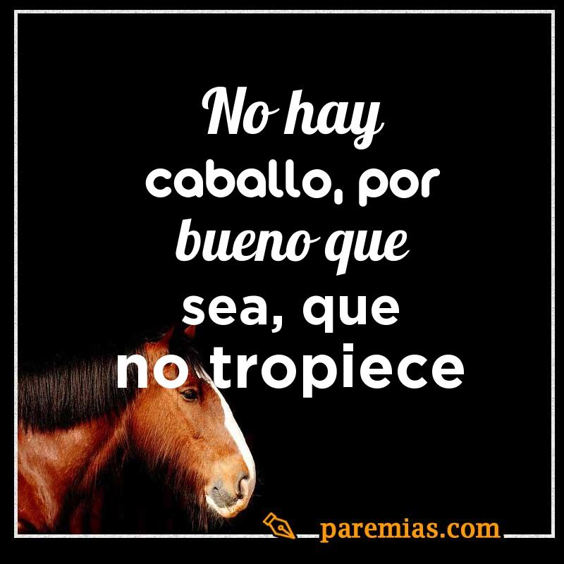 No hay caballo, por bueno que sea, que no tropiece