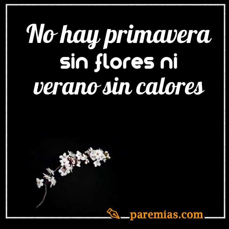No hay primavera sin flores ni verano sin calores