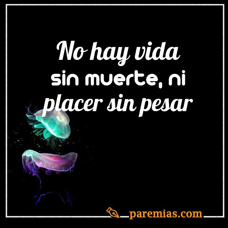 No hay vida sin muerte, ni placer sin pesar
